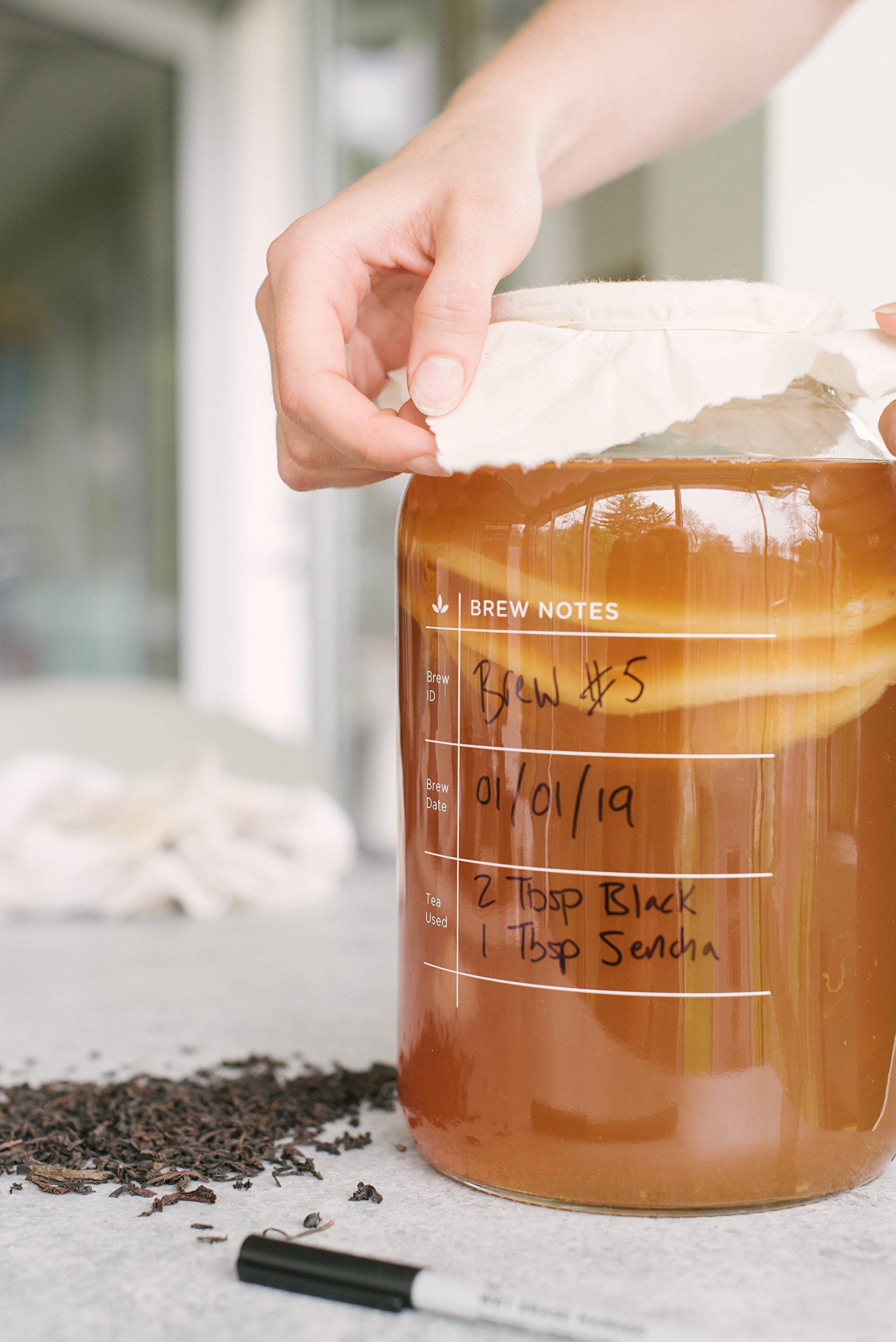 Kombucha Brewing Kit with Organic Kombucha Scoby. Includes Glass Brew Jar, Organic Kombucha Loose Leaf Tea, Temperature Gauge, Organic Sugar and More! by The Kombucha Shop (Image #6)