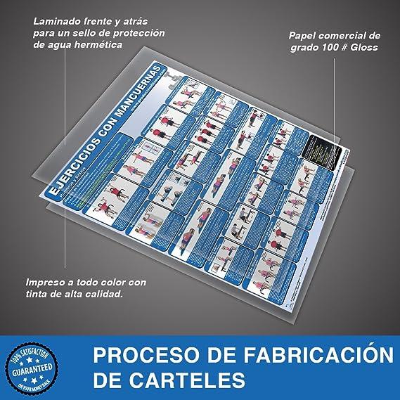 Amazon.com : Ejercicios con Mancuernas - Hombros y Brazos - Cartel - Dumbbell Exercises - Shoulders and Arms (Spanish Edition) Laminated 24