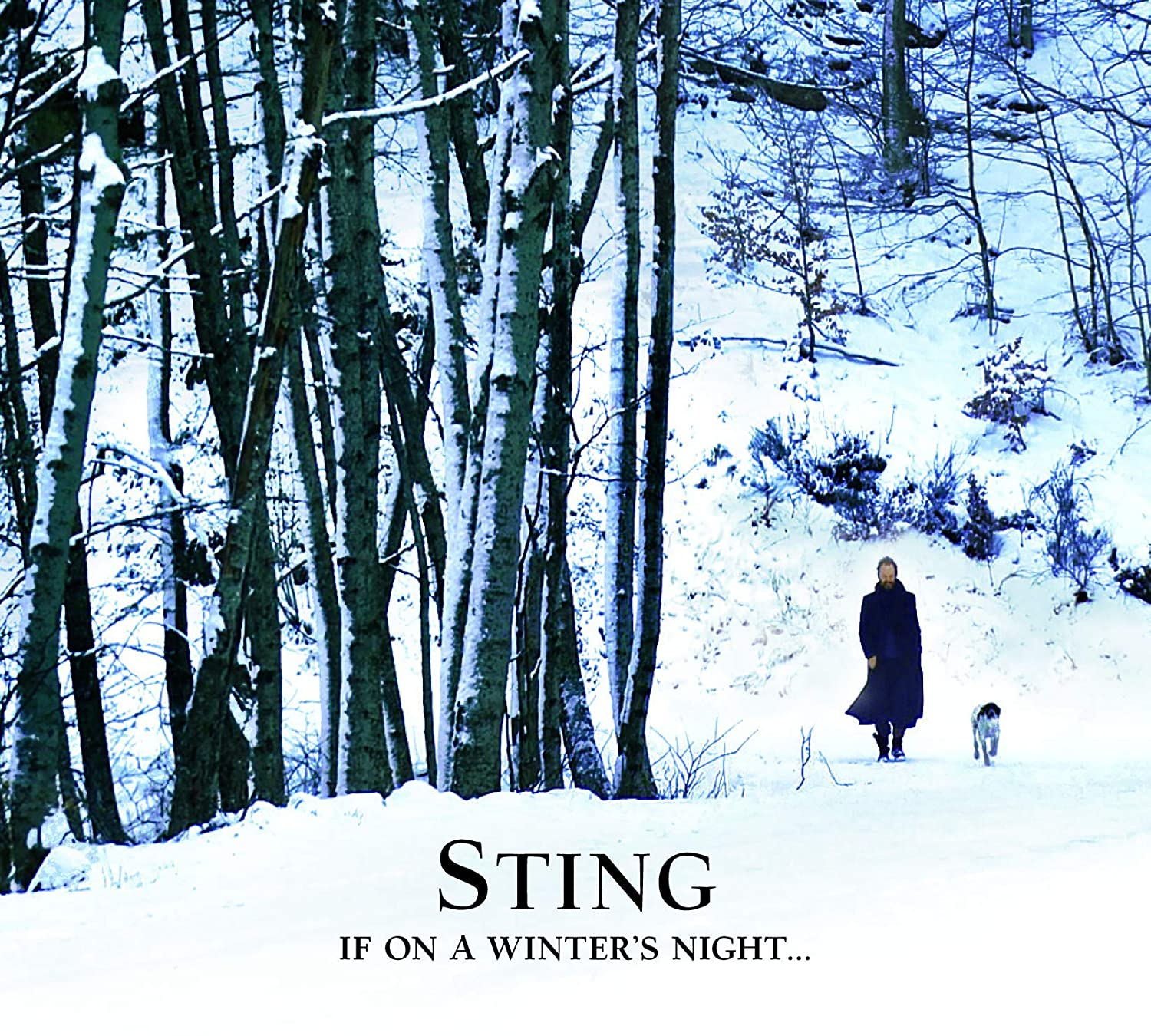 If On A Winter S Night Musik