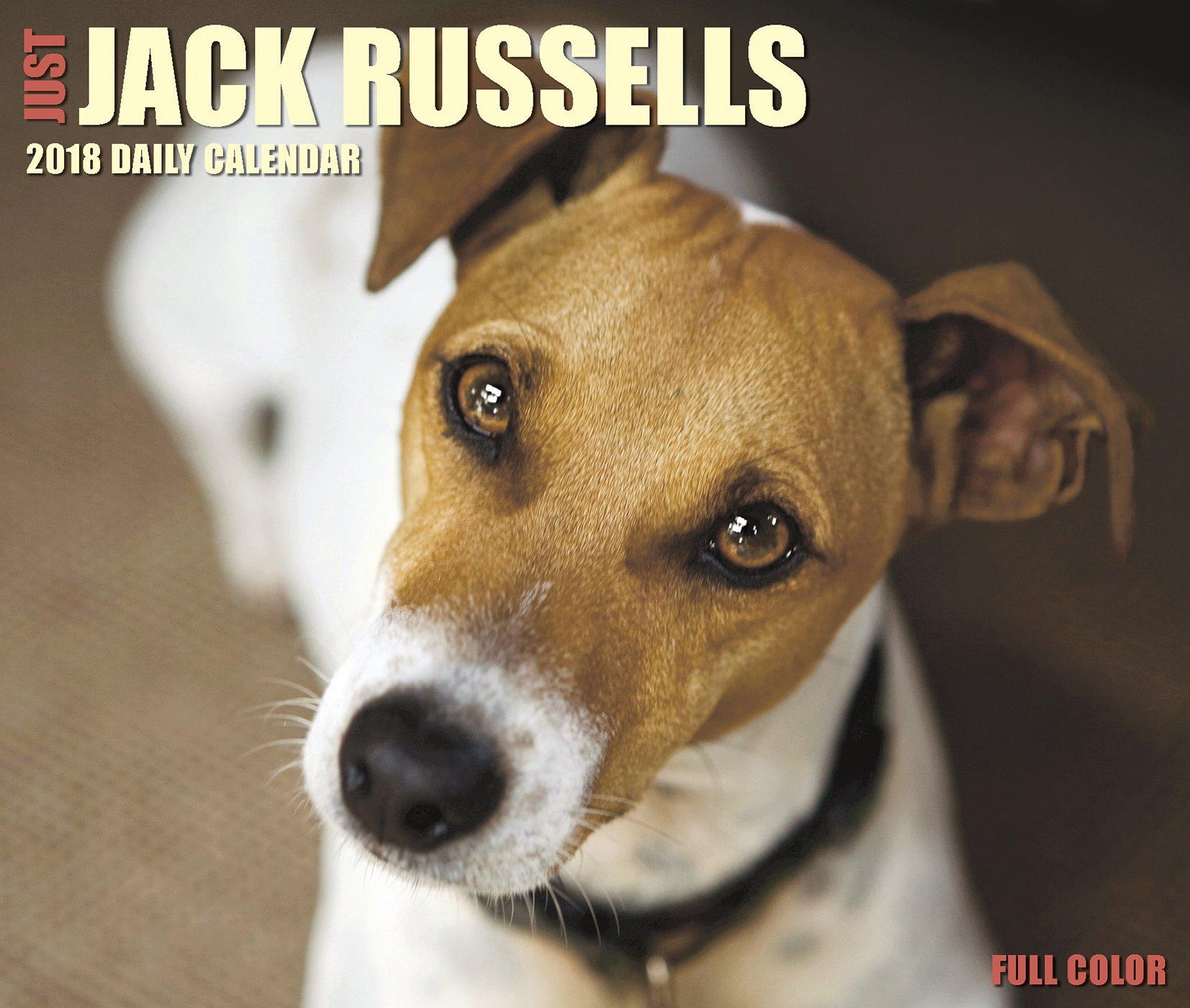 Just Jack Russells 2018 Calendar
