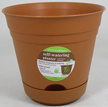 Amazon Com 3 Pk 7 Dynamic Design By Southern Patio Self Watering