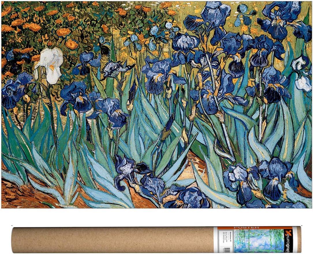 EuroGraphics Van Gogh - Irises Poster, 36 x 24 inch