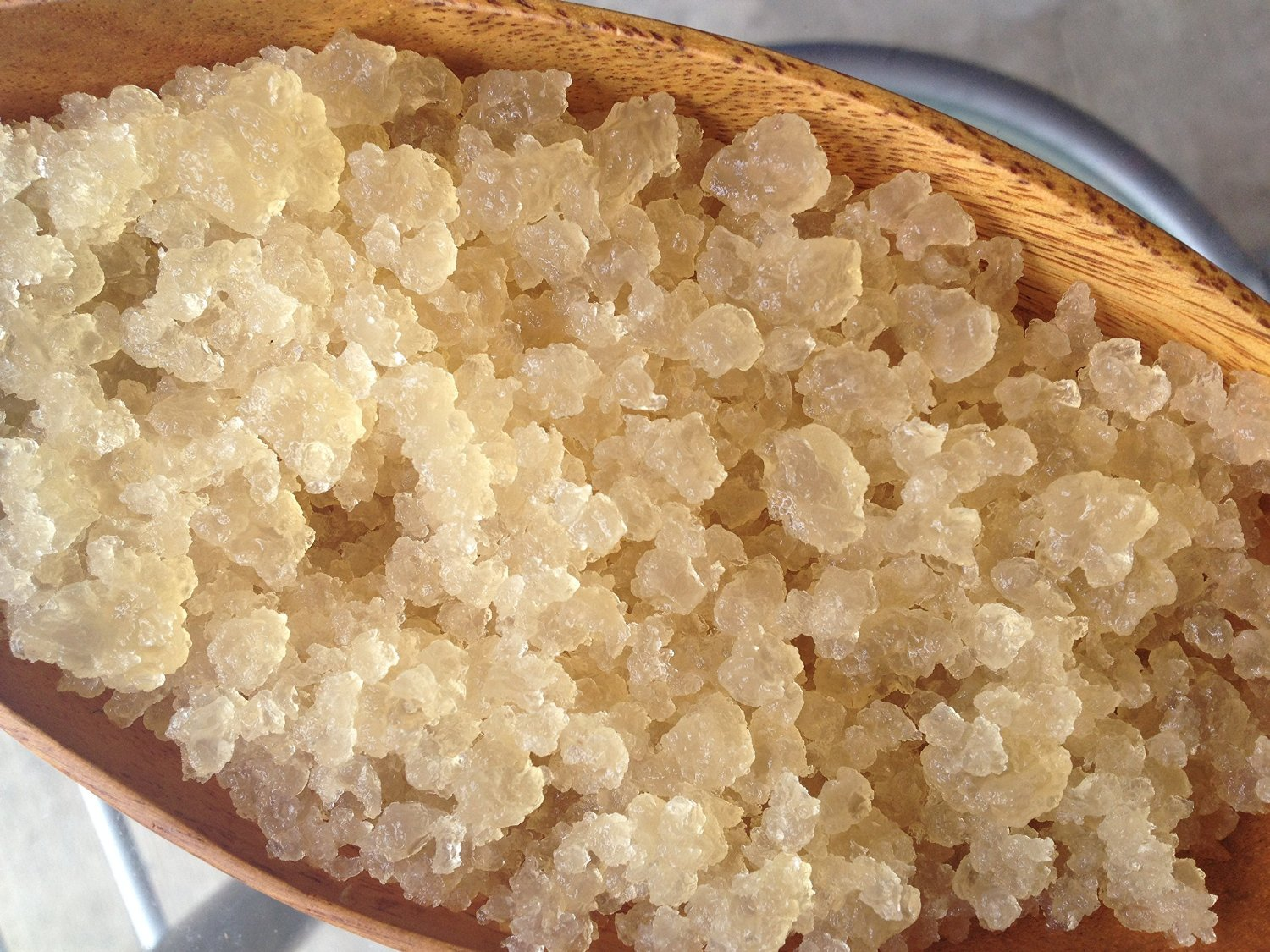 2 Cup Organic Original Water Kefir Grains Exclusively from Florida Sun Kefir with 8 Brewing Bags