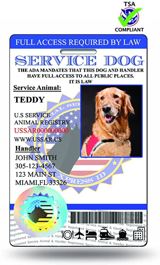 893a1b89d5ad Amazon.com : HoloSeal Holographic Service Dog ID   Includes Registry ...