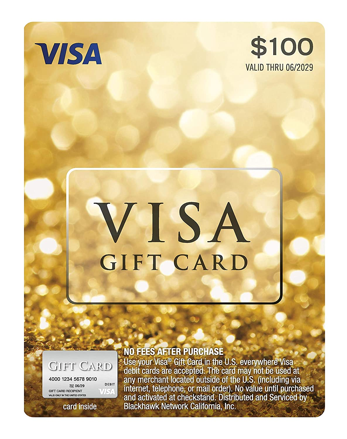 $10 Visa Gift Card (plus $10.910 Purchase Fee)