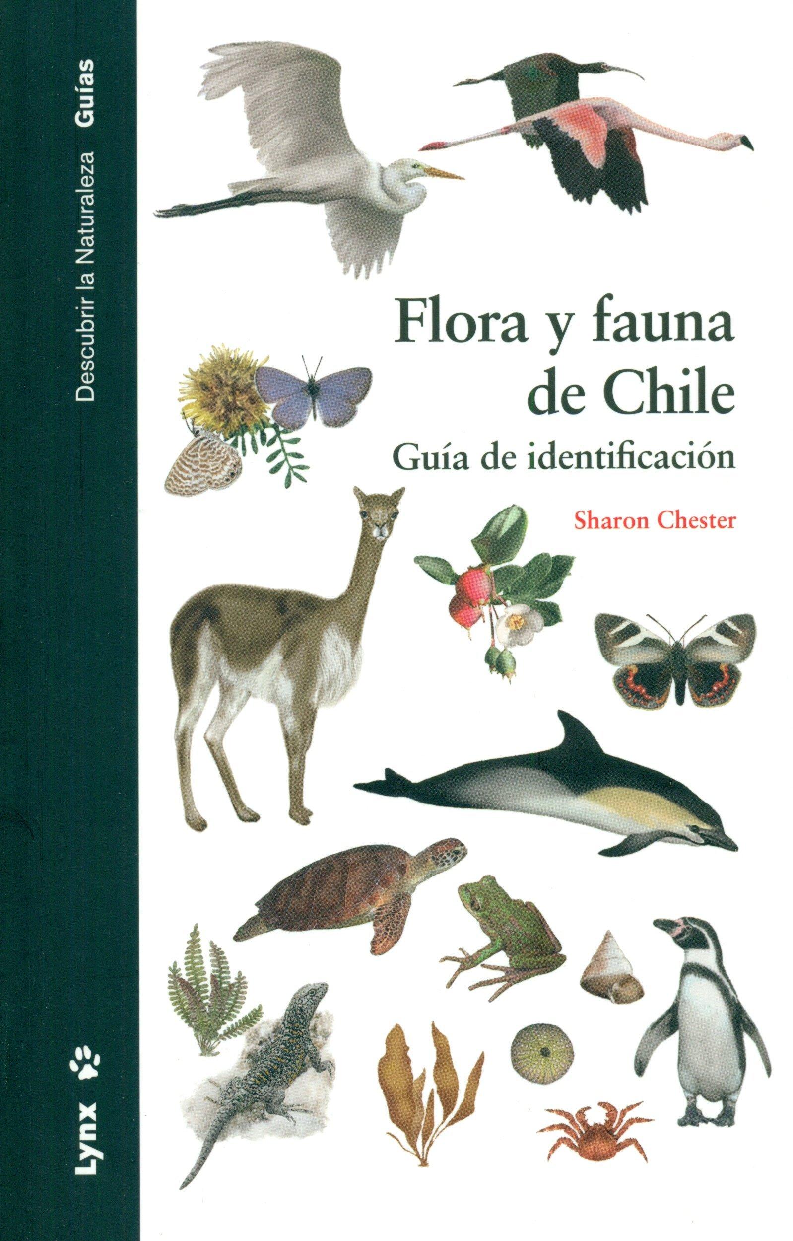 Flora y fauna de Chile. Guía de identificación Descubrir la Naturaleza. Guías: Amazon.es: Sharon Chester, Elisabet Carreras: Libros