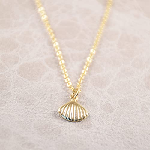 Amazoncom gold seashell necklace gold sea shell necklace gold