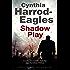 Shadow Play: A British police procedural (A Bill Slider Mystery)