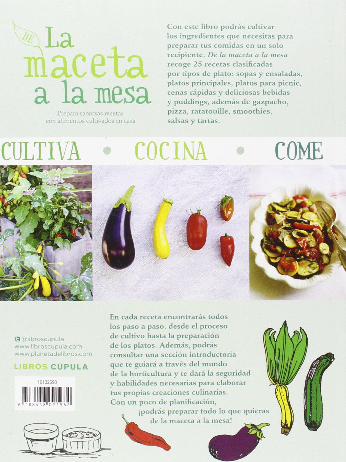 De la maceta a la mesa: Cinead McTernan: 9788448021962: Amazon.com: Books