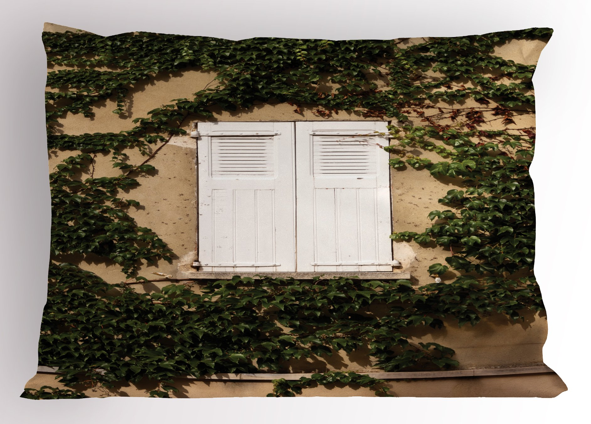 Lunarable Country Pillow Sham, Cultural Ancient Mediterranean Wood Window Shutter Ivy Plant Image Print, Decorative Standard Size Printed Pillowcase, 26 X 20 inches, Ecru White Green by Lunarable (Image #1)