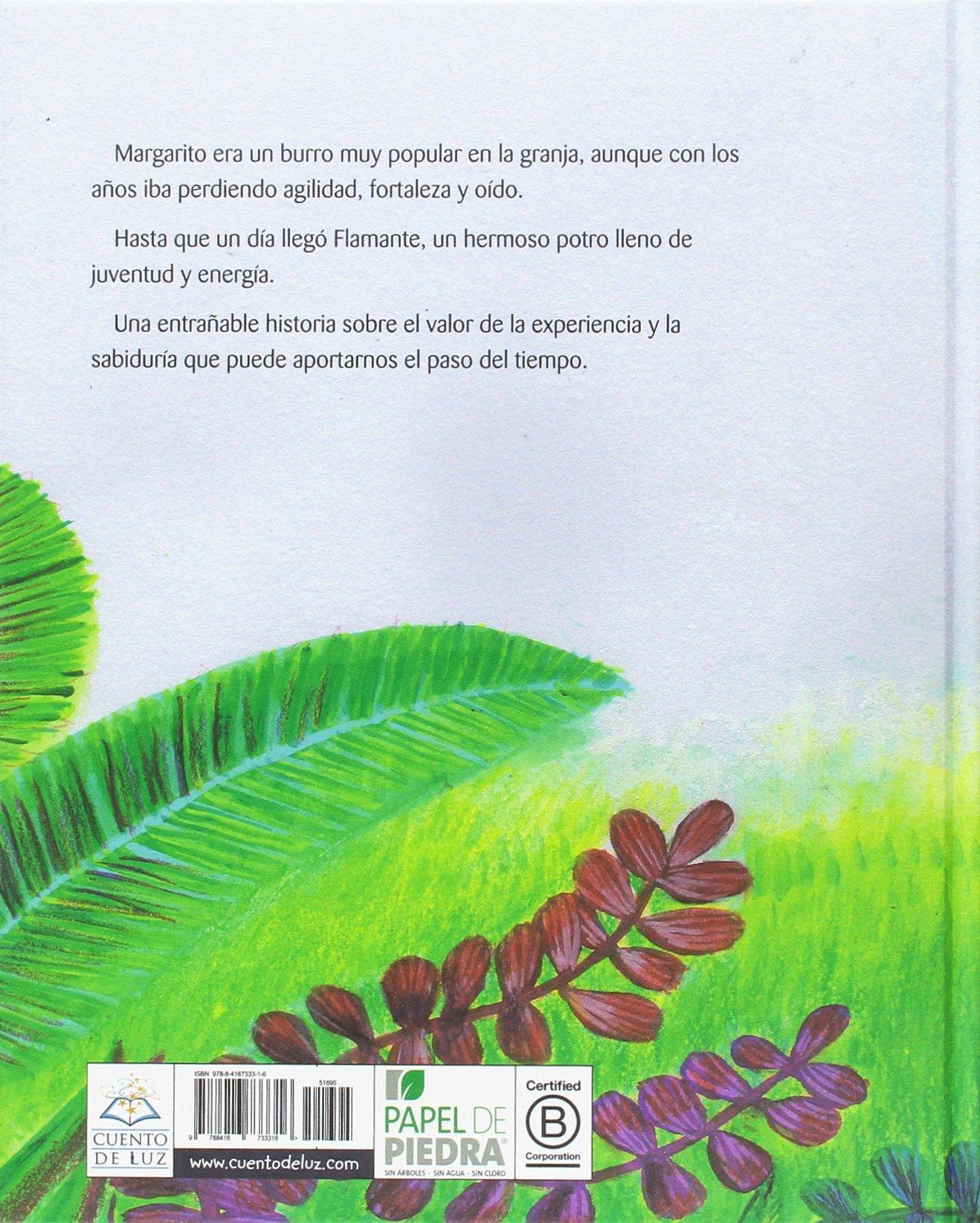 Margarito (Spanish Edition)