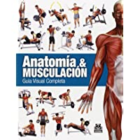 Anatomía y musculación: Guía visual completa: Guía completa