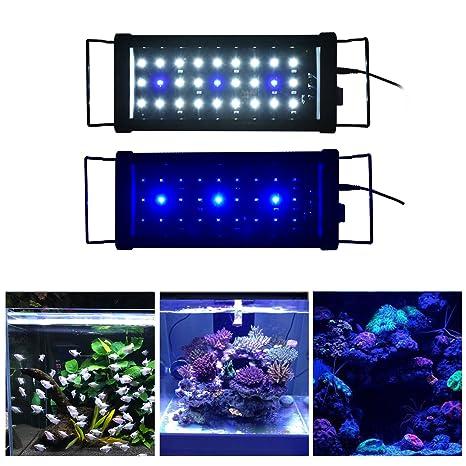 Acuario Aquarieneco con luz de 27-180cm. Peces y plantas LED,