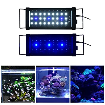 Acuario Aquarieneco con luz de 27-180 cm. Peces y plantas LED, acuario con luces de campana para tanque de agua dulce y salada.: Amazon.es: Productos para ...