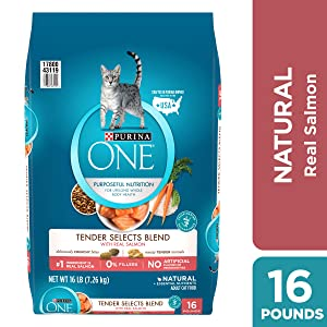Purina ONE Tender Selects Blend with Real Chicken