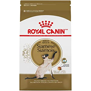 Royal Canin Breed Health Nutrition Siamese Dry Cat Food