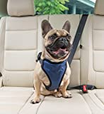 PetSafe Happy Ride Deluxe Car Harness for Dogs - Adjustable, Multiple Sizes, Includes Seat Belt Tether