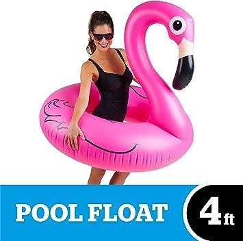 Amazon.com: Bigmouth Inc Flotador para piscina con forma de ...
