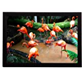 eCraftIndia Flamingos Satin Matt Texture UV Art Painting