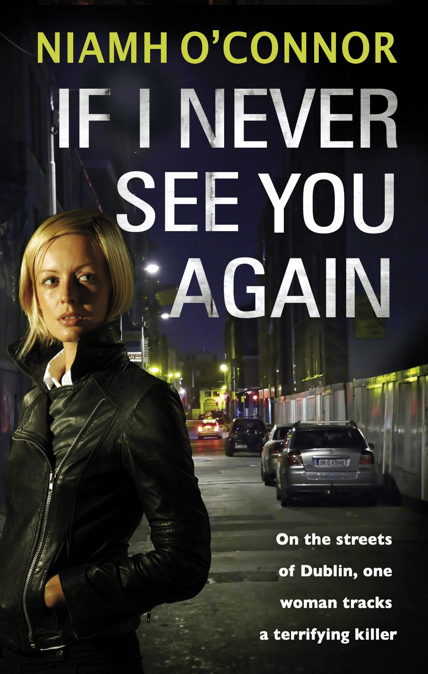Download If I Never See You Again (A Jo Birmingham Thriller) PDF