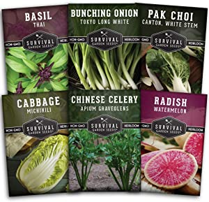Survival Garden Seeds - Asian Vegetable Collection Seed Vault for Planting - Thai Basil, Napa Cabbage, Chinese Celery, Green Onions, Watermelon Radish - Non-GMO Heirloom Varieties
