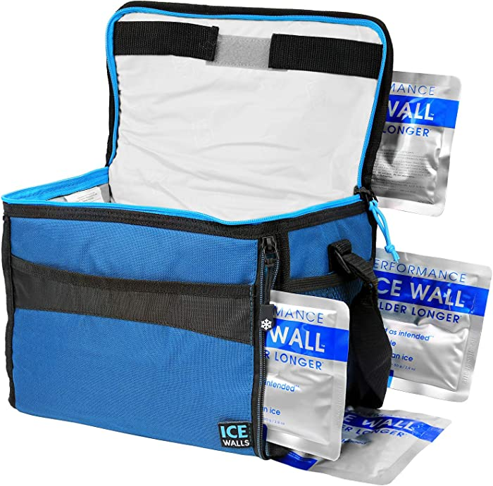Arctic Zone Insulated Collapsible Travel Cooler Holds 12 Cans (4 Ice Packs Included), Packaging May Vary