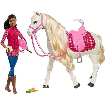 Barbie DreamHorse & Black Hair Doll: Barbie: Toys & Games