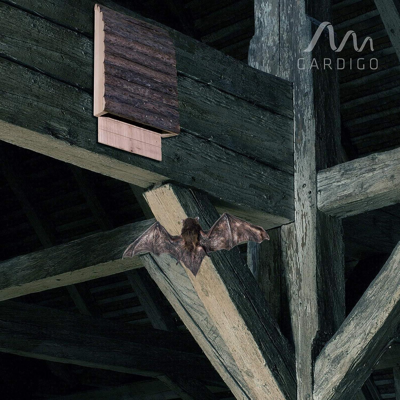 Gardigo 90536 - Casa para Murciélagos; Colores de Madera Natura; Hotel Casitas Nido para Murciélago: Amazon.es: Jardín