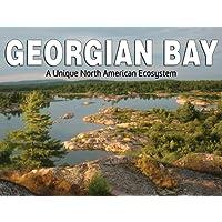 Georgian Bay: Discovering A Unique North American Ecosystem