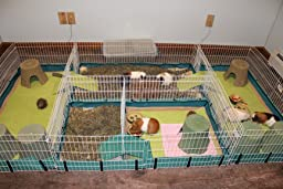 how to make a guinea pig cage out of cardboard