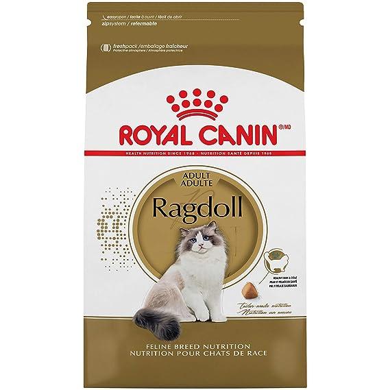 3. Royal Canin Feline Breed Nutrition - Best for Ragdolls