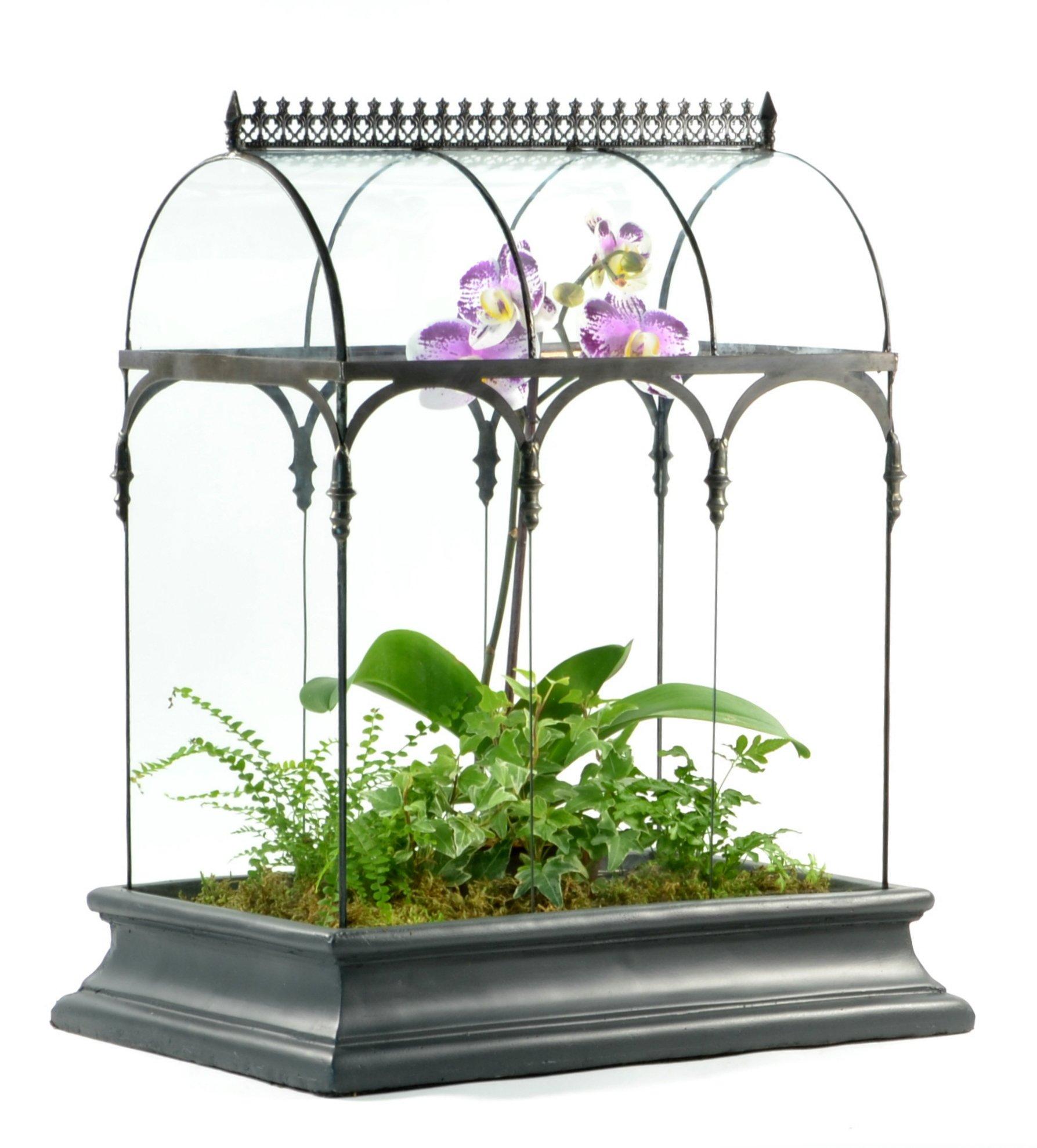 H Potter Glass Plant Terrarium Planter Container Wardian Case by H Potter