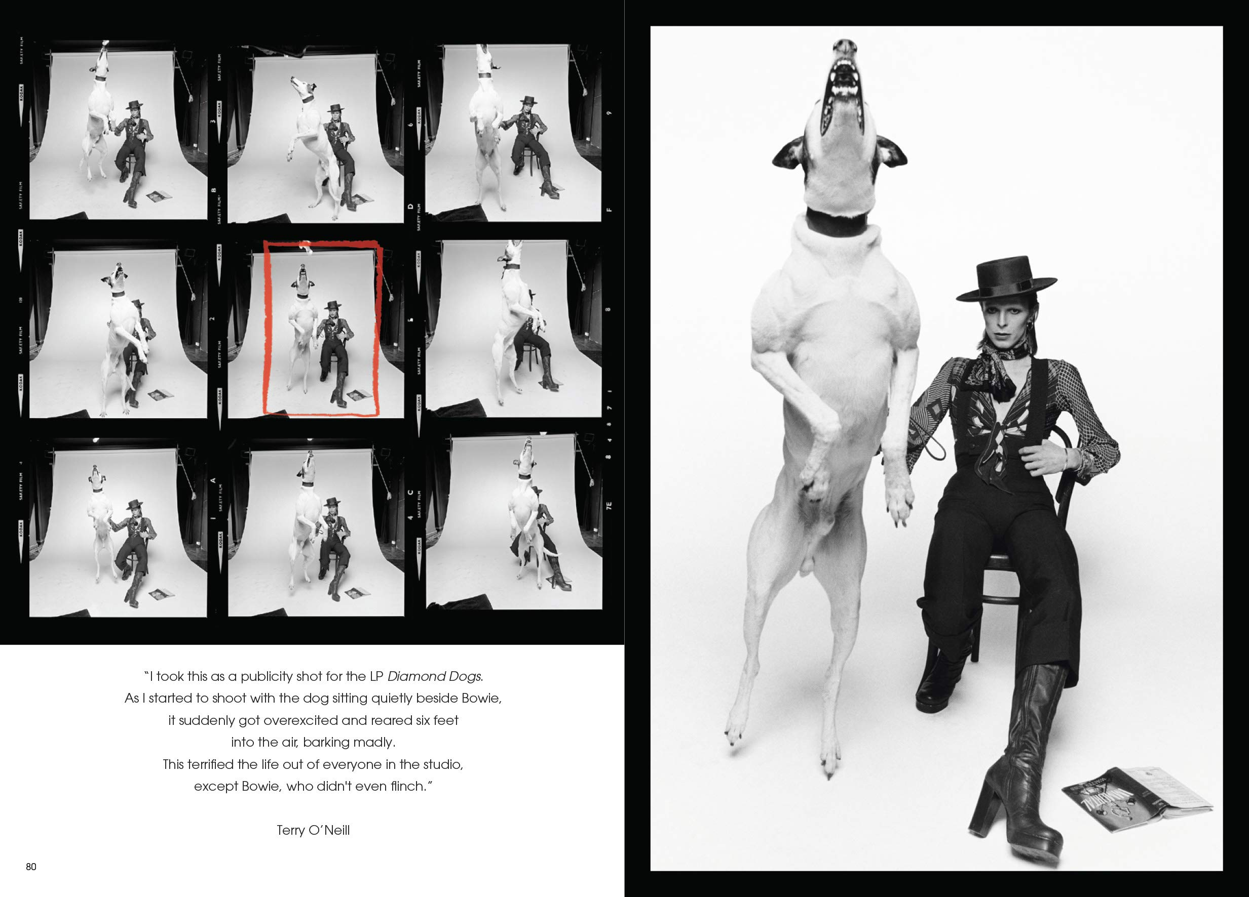 The definitive collection with unseen images Bowie by ONeill