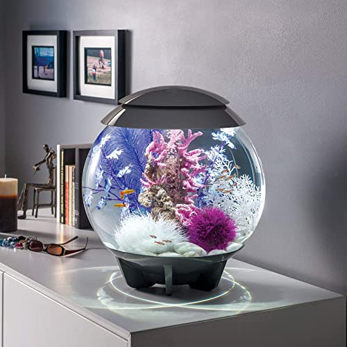 biOrb-Halo-15-Aquarium-with-MCR-Lighting