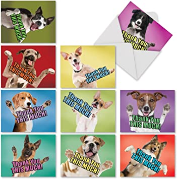 Set of 8. DOGS WHIMSICAL DOGS theme blank note cards