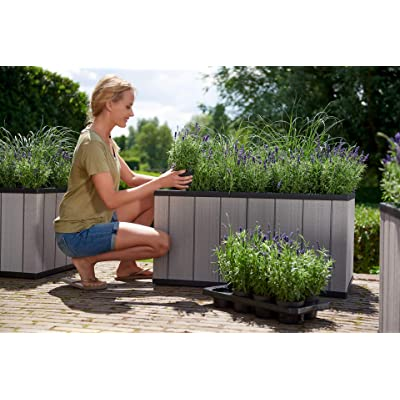 Keter Sequoia 39 Inch Wide Resin Large Outdoor Garden Bed with Self Watering Planter Feature, Drainage, and Optional Wheels for Easy Moving, Grey : Garden & Outdoor