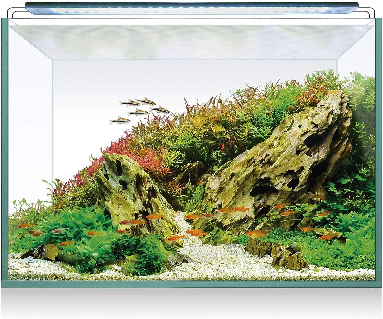 ICA Kit Acuario Completo AQUASCAPE RGB 68 de 70 litros