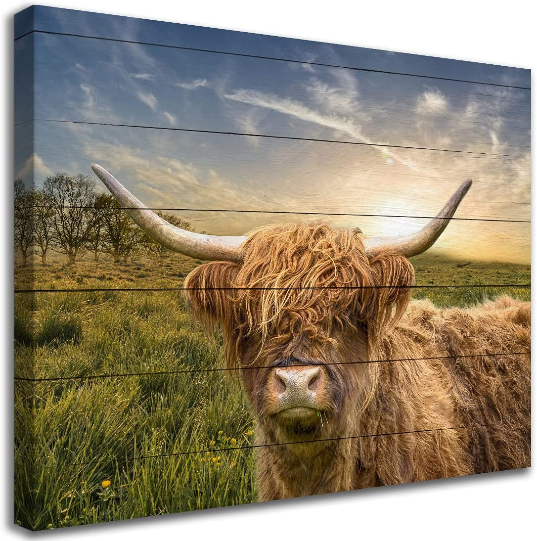 Wall Art Scottish Highland Cow on the Sunrise Grassland Vintage Country Wall Decor Canvas Wooden Framed Size 16