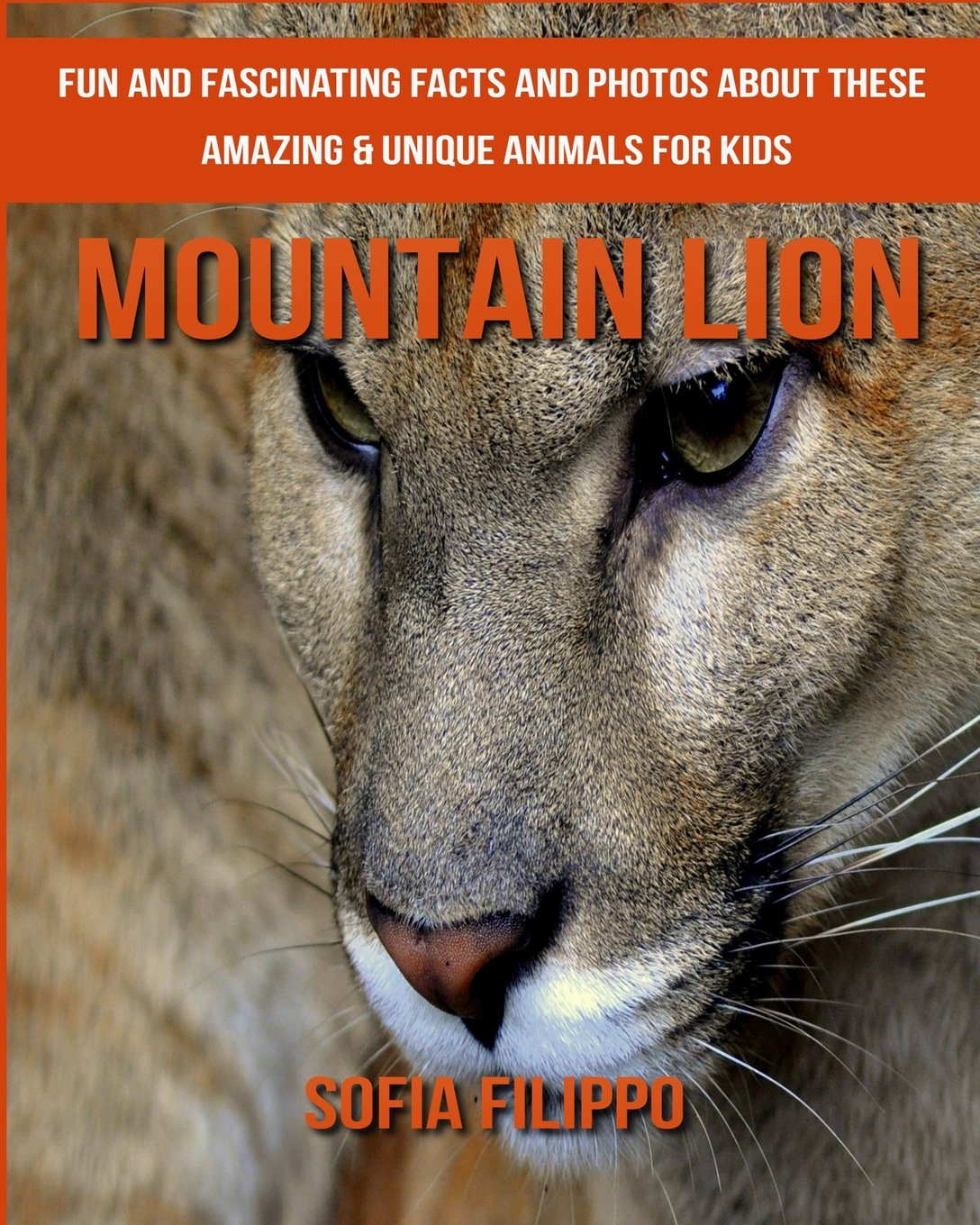Mountain Lion: Fun and Fascinating Facts and Photos about