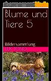 Blume und Tiere 5: Bildersammlung (German Edition)