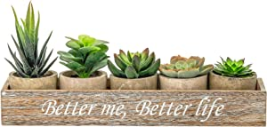 N/A. 5 Artificial Succulent Plants with Potted with Rustic Planter Box,Mini Succulents Artificial in Pots Small Artificial Plants Indoor, Faux Cactus Aloe for Home,Bookshelf, Kitchen Counter Decor.