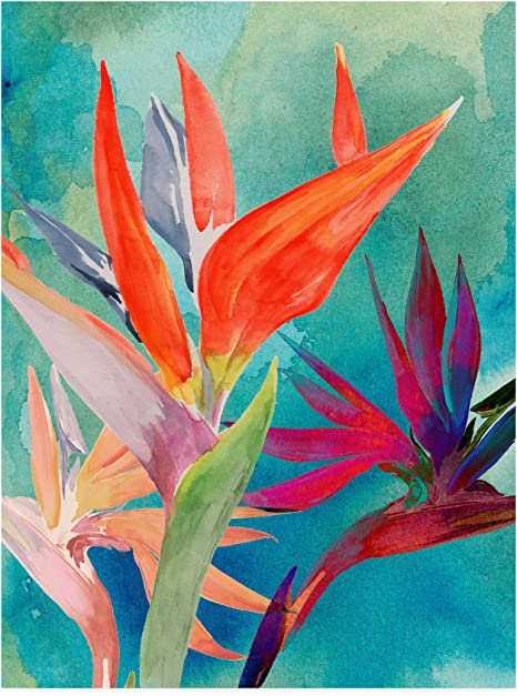 Amazon Com Trademark Fine Art Vivid Birds Of Paradise I By Jennifer Paxton Parker 35x47 Posters Prints