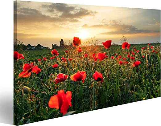 Leinwandbild Canvas Wandbilder Kunstdruck Keilrahmen Pflanzen rote Mohnblumen