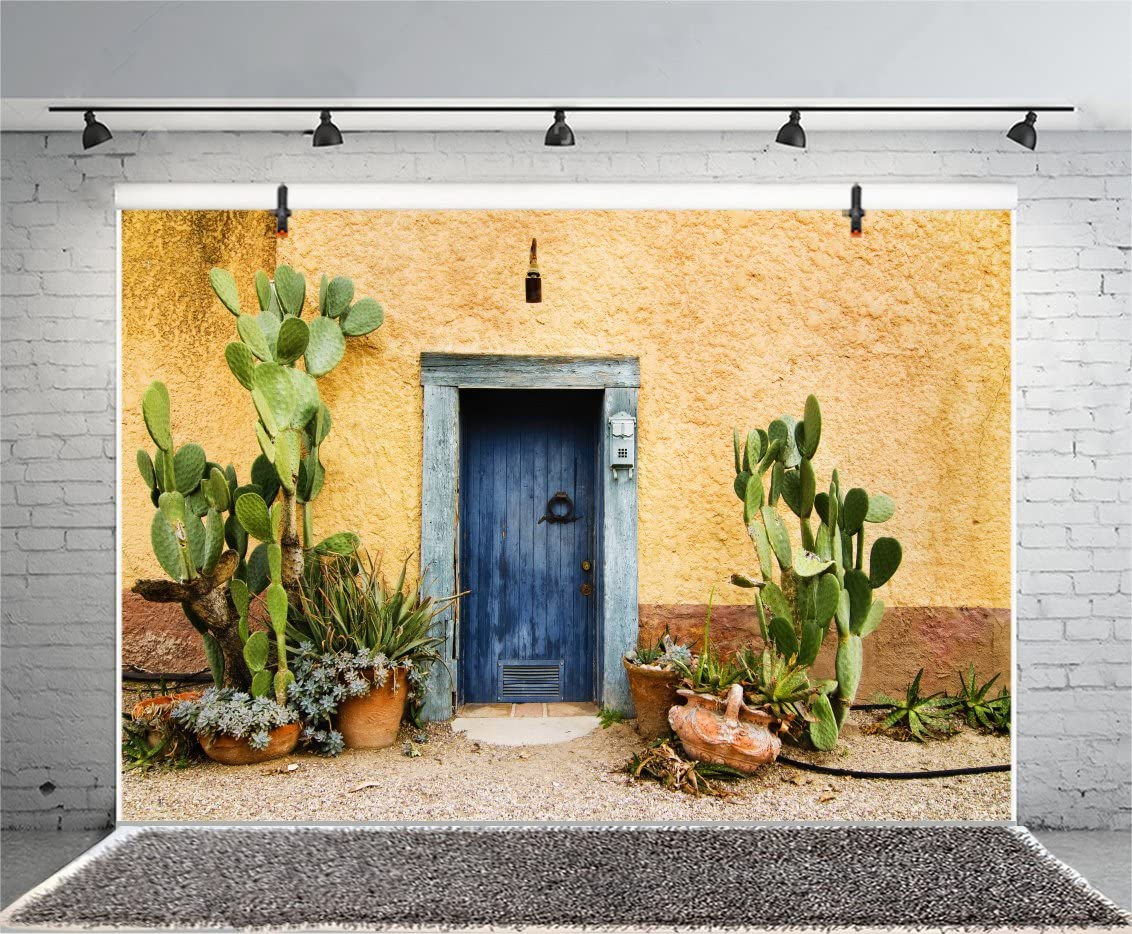 Leyiyi 7x5ft Photography Background Mexico Cactus Backdrop Western Building Life Desert Plant Saguaro Grunge Stone Wall Flowerpot Oilpainting Garden Door Cowboy Photo Portrait Vinyl Studio Video Prop