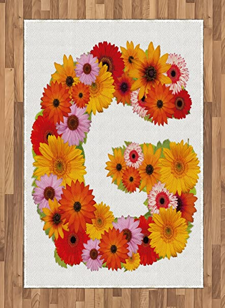 Amazoncom Ambesonne Letter G Area Rug Composition With Fresh
