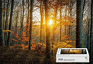 Sim,Handmade Premium Wooden Puzzle Home Decor - Autumn Forest Trees Leaves Yellow Sunlight,20.6 X 15.1 inch - 500 Piece Jigsaw Puzzle
