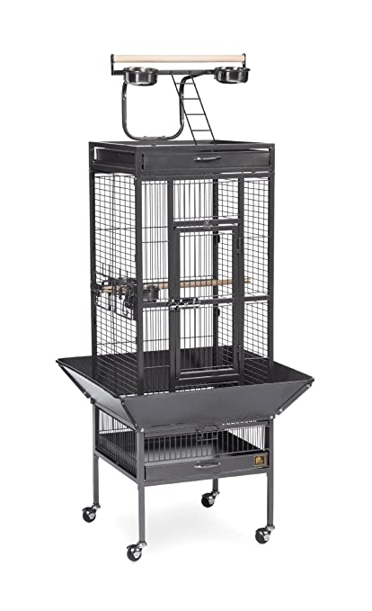 2a43a151574b Prevue Pet Products Wrought Iron Select Bird Cage, Black Hammertone