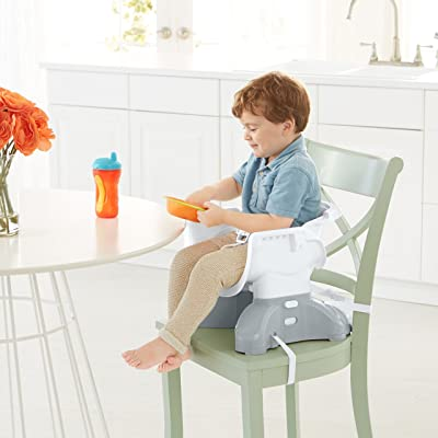 Fisher-Price-SpaceSaver-High-Chair-Reviews