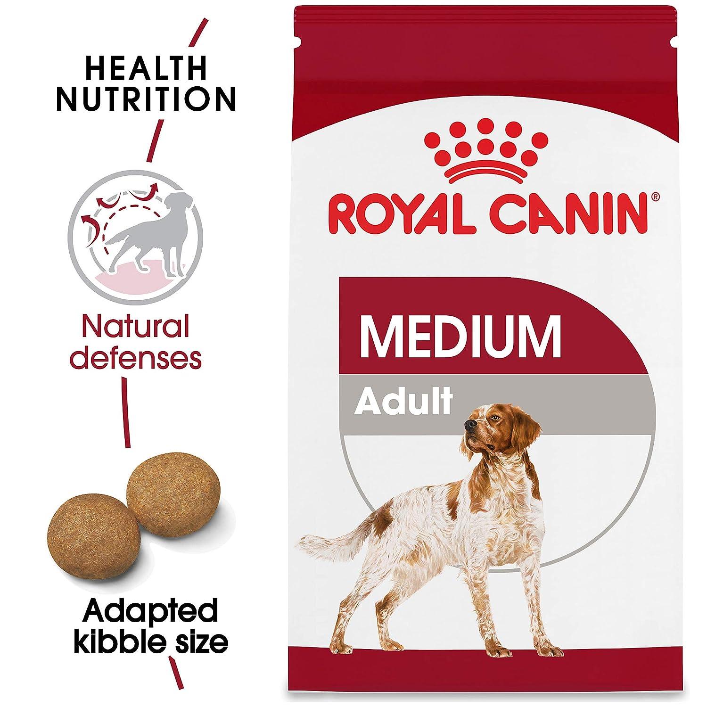 Amazon.com: Alimento seco para perros adultos de talla ...