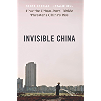 Invisible China: How the Urban-Rural Divide Threatens China's Rise